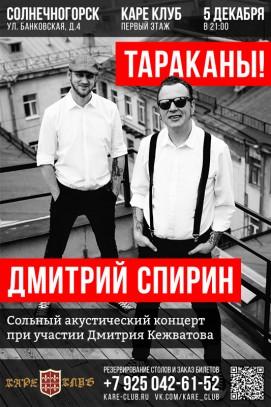 Сольный акустический концерт Дмитрия Спирина